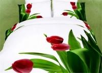 Постельное белье 2-спальное (стандарт) Tango сатин ts 793 (с наволочками 70х70)