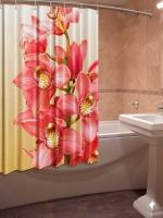 Шторка для ванной Новый стиль Шардоне 148x180